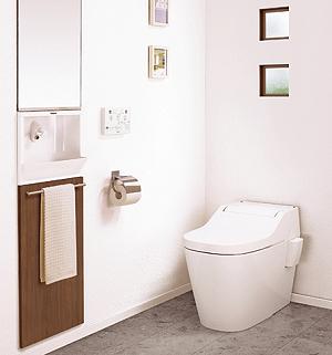 toilet-pana.png